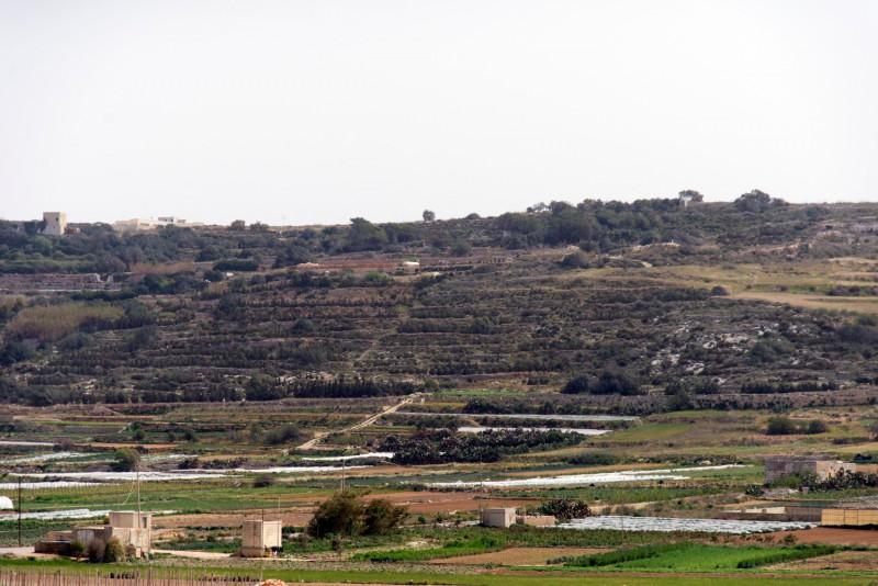 Malta - 7237