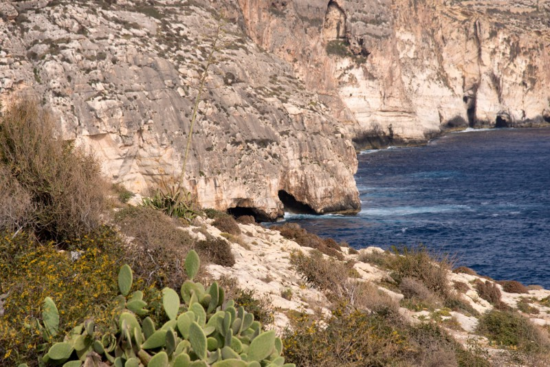 Malta - 7335