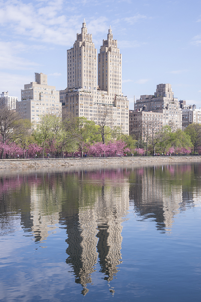 Spring Reflection - New York - 5957