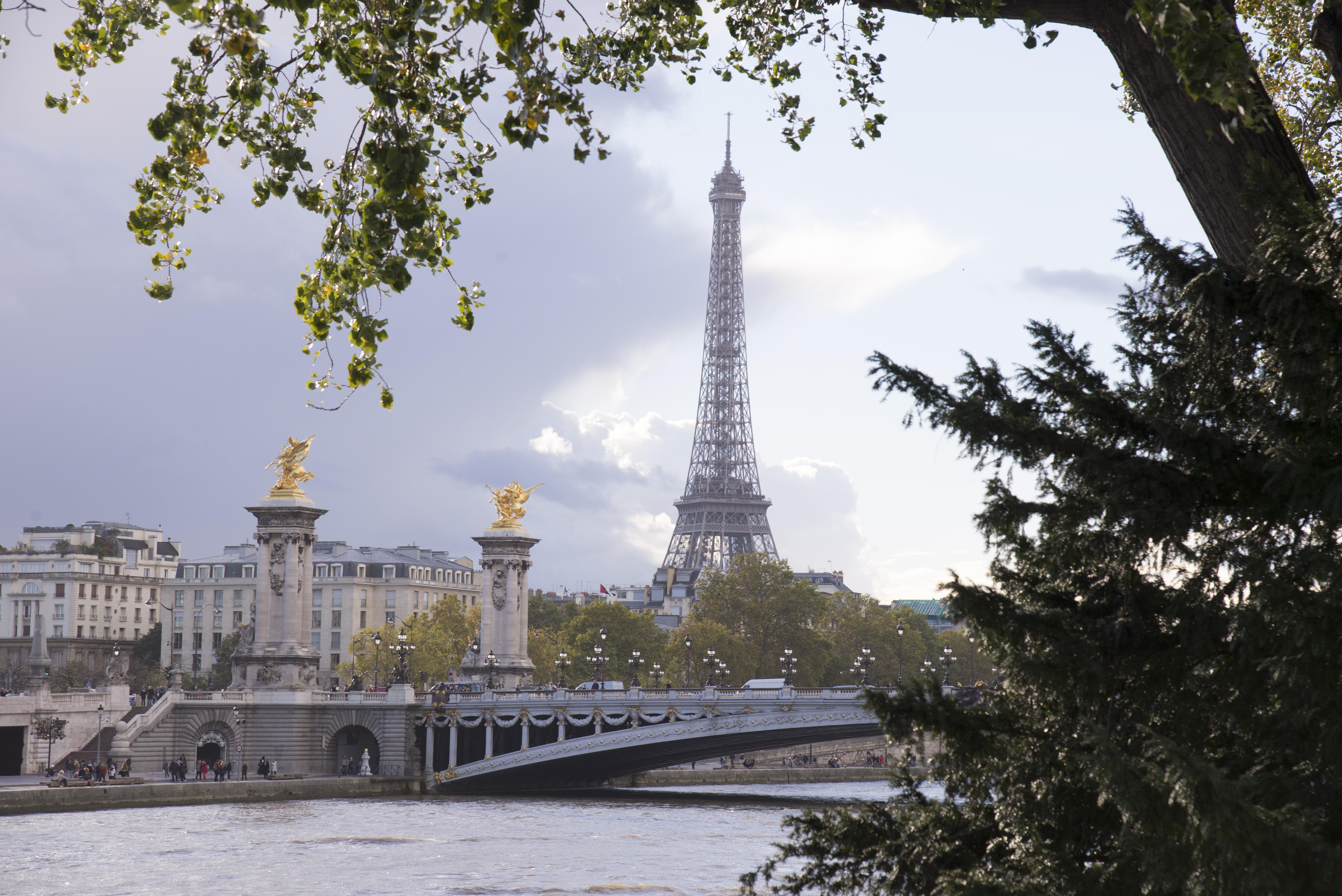 Golden Tower - Paris - 7299