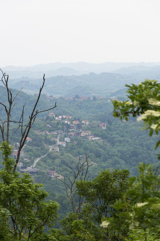 Turin - 8269