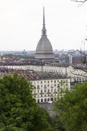 Turin - 7917