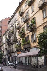 Turin - 7981